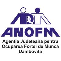 agentia-judeteana-pentru-ocuparea-fortei-de-munca-tgv